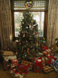 A Decorated Christmas Tree with Wrapped Presents Beneath
