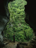 A Man Stands at the Mouth of a Fluvial Cave Near Lush Slope