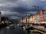 Tourist Boat Cruises Nyhavn  New Harbor  Along the Scenic Canal in Copenhagen