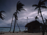 A Storm Ravages the Palm Trees and Huts on Glovers Reef