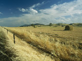 A Hay Field with Bales Sitting under a Cloud-Filled Sky