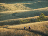 Bicyclists Pedal a Trail Through the Rolling Hills