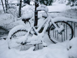 A Snow-Covered Bike Retired for the Winter
