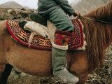 A Kirghiz Nomad on Horseback