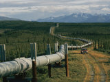 A Dirt Road Winds Beside the Alaskan Pipeline
