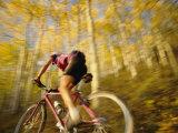 A Mountain Biker in Autumn