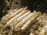 Eggs Packed in Straw for Travel and Inspection