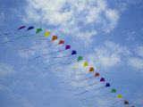 Kites Fly in a Rainbow of Colors at the Jockeys Ridge Kite Festival