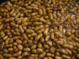 Boiled Peanuts