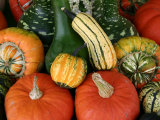 Autumn Colors Abound in This Stack of Pumpkins and Squash