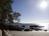 A View of a Beach in British Columbia