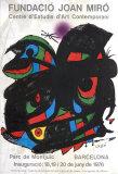 Fundacio Joan Miro 1976
