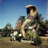 Vacationers Looking at Statue of Huge Cobra Outside Small Bldg