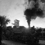 Locomotive Rolling Into Junction at Sunrise