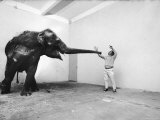Life Photographer Arthur Schatz with Elephant While Shooting Story on the Franklin Park Zoo