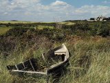 Broken Old Rowboat Cushioned in Tall Wild Grass  with a View of a House in Distance