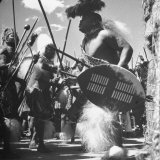 Zulu Warrior Delivering Messages Between the Chief and His Councilors