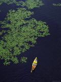 Aerial View of Man Canoeing in Lily Padded Lake in the Upper Peninsula