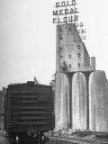 Exterior View of the Gold Medal Flour Mill