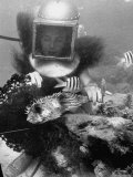 Diver Meddling Around with a Blowfish in Hartley's Underwater Movie in Bermuda