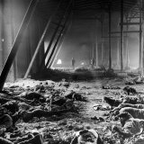 Corpses Litter Gardelegen Warehouse After SS Guards Burn Prisoners to Keep Them Out of Allied Hands