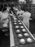 Cakes Being Frosted in A&amp;P Plant