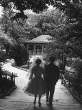 Couple Just Married Taking a Walk in a Park