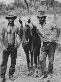 Australian Cowboys