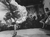 Female Gypsy Dancer