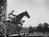 English Steeplechase Jump on Course in England