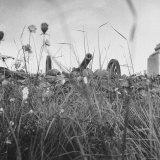 Gettysburg Battlefield Canons