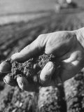 Farmer Holding a Handful of Soil