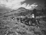 Family Vacationers Riding Pack Mules Into Hills For Some Camping  Rocky Mountain Auto Tour