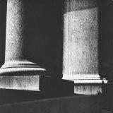 Classical Doric Column in Interior of Penn Station