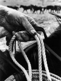 Rough  Dirty  Weather Beaten Hand of a Cowboy Holding a Rope