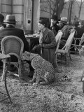 Woman Sitting with Her Pet Ocelot Having Tea at Bois de Boulogne Cafe