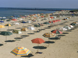 Rows of Open Beach Umbrellas Lining a Sandy Cape Cod Beach