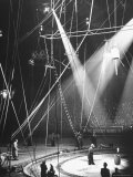 Typical Scene at Circus
