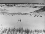Summer at Cape Cod: Walking in the Sand Dunes