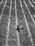 Shadow of a Small Plane on Fields  Flown by a Farmer on Inspection Trips About His Land