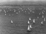 The Start of the Newport Ensenada Race