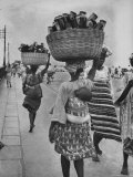 Nigerian Women with Babies Strapped to Their Backs Carrying Large Baskets on Their Heads