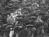 Rain Drenched Fans at Purdue University Homecoming Game
