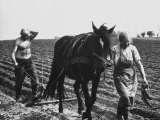 Polish Farmer and Wife Plowing