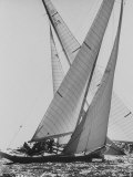 The Colombia and Nefertiti During Trial Race For the America&#39;s Cup