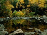 An Autumn View of Calf Pasture River