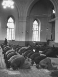 Moslems at Prayer