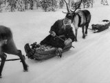 Woman on Sled Pulled by Reindeer Heading to Lapp Market