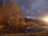 Autumn Landscape Near Telluride  Colorado