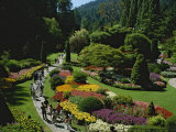 People Strolling Among Flowers of the Sunken Garden  Butchart Gardens